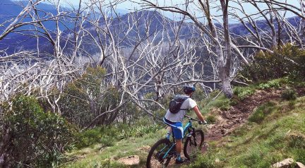 Bike Buller…Where The Trails Keep On Giving
