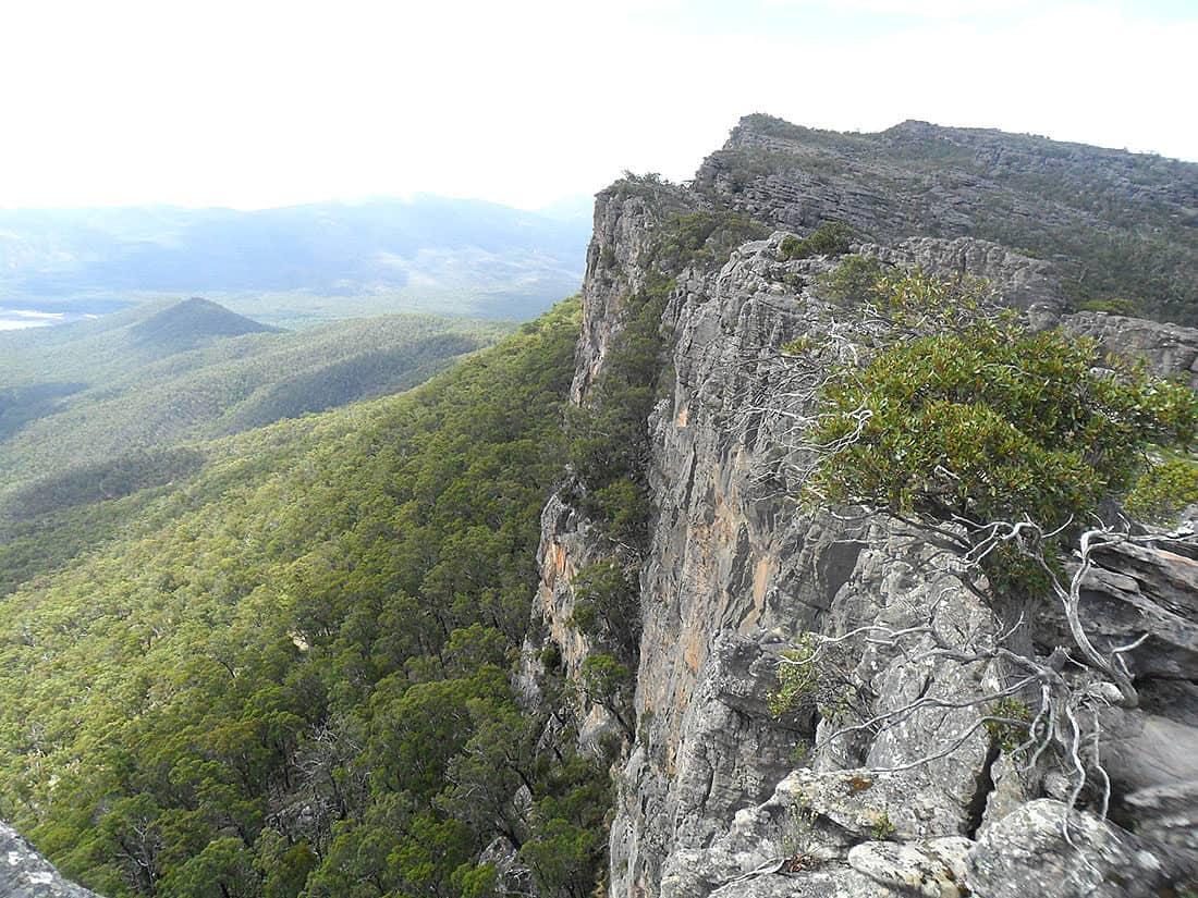 Looking towards Mount Rosea summit.